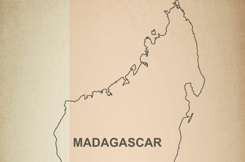 Article : Quand l'Afrique attire (part 1) : Madagascar, l'île de la tentation ?